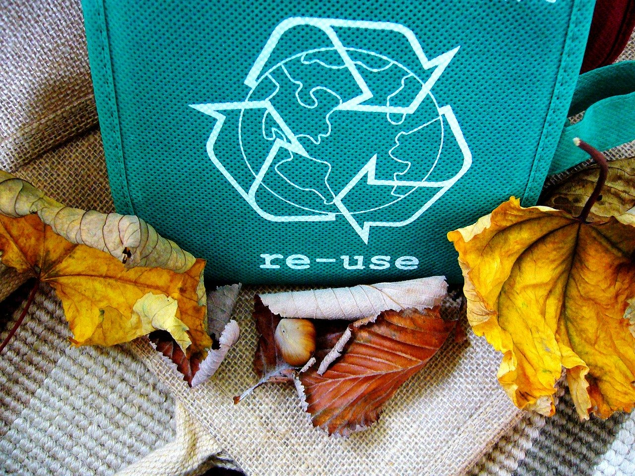 fall leaves recycle reuse bag